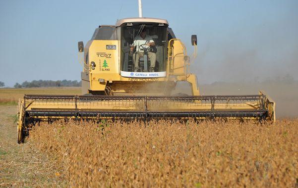 Cosecha. El gobierno espera que la cosecha contribuya a traer divisas y mejorar la actividad económica.