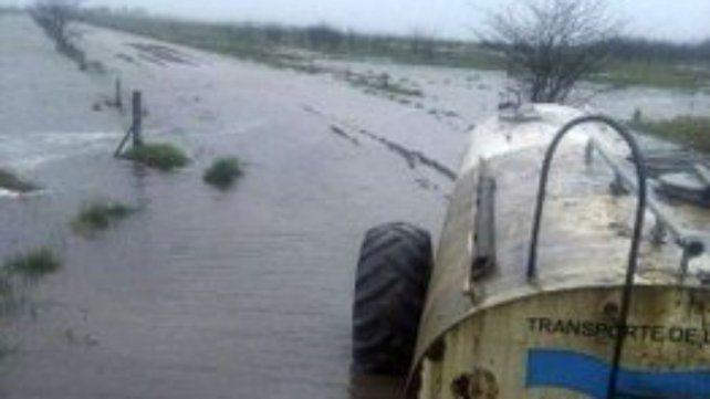 Desastre. Las últimas lluvias agudizaron la crítica situación lechera.