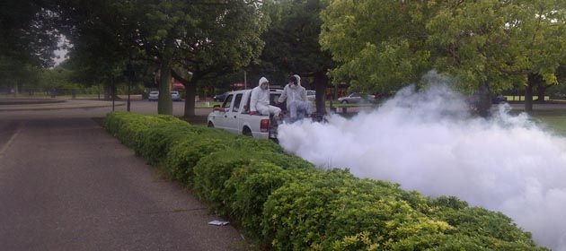 Desde el municipio continúan con las tareas de fumigaciones para evitar la propagación del dengue.