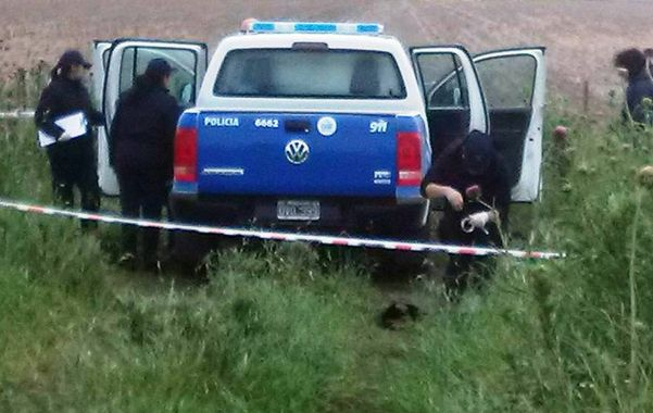 Entre pastizales. La camioneta policial donde apareció el cadáver del agente Leandro Delgado