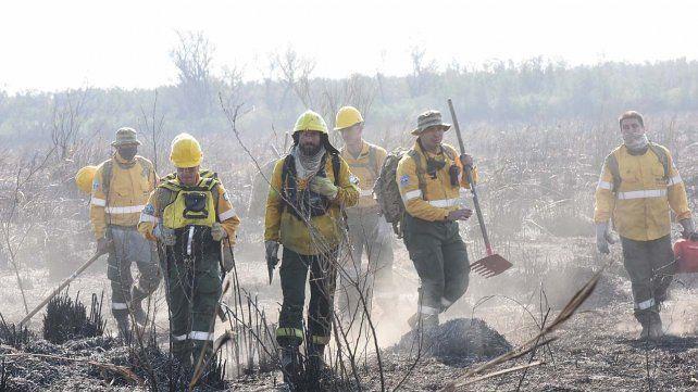 La nueva brigada de reacción rápída para combatir los incendios en las islas podría estar operativa en febrero próximo.