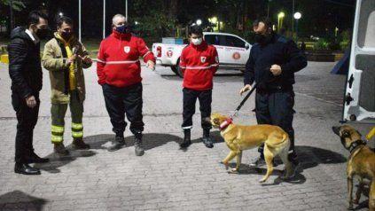 La brigada K9 de Santa Fe está a cargo de Sergio Ciruchich y consta de cinco perros altamente adiestrados.