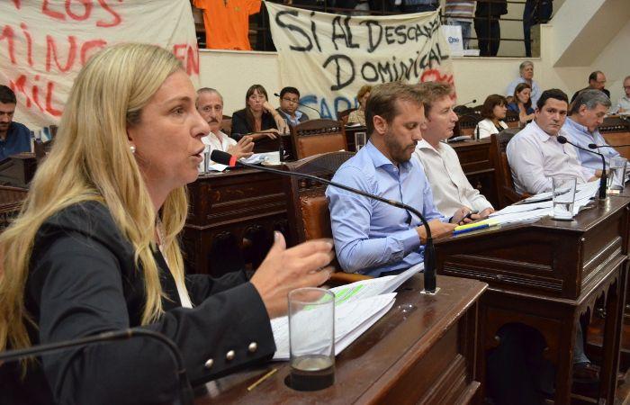 Unión PRO y el radical Martín Rosúa votaron en contra del proyecto.