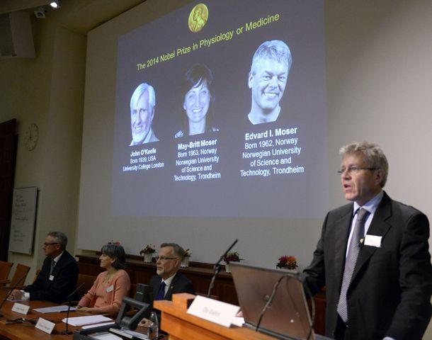 Los galardonados fueron anunciados hoy en Suecia.