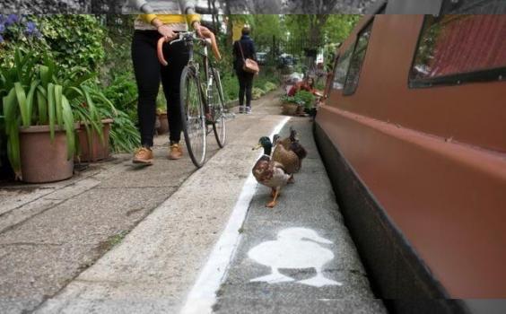 La llamativa senda peatonal sorprendió a los británicos.