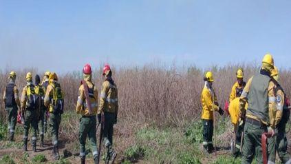El grupo que trabajó sobre el terreno estuvo integrado por 12 brigadistas.