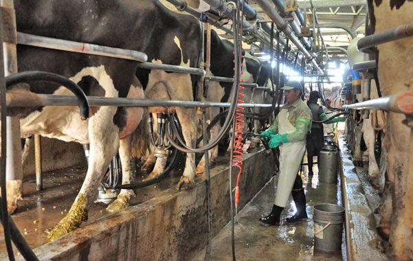 Las empresas se comprometieron a tomar nuevamente la leche que liberaron hace 10 días.