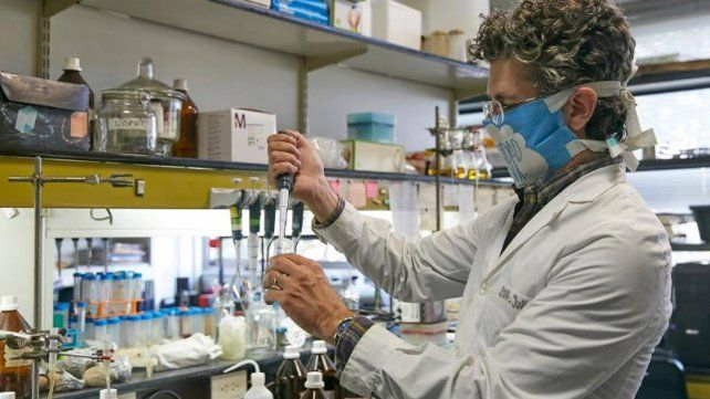 La investigación está a cargo del Conicet y dos universidades