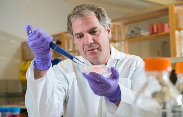Esperanza. Gary Kobinger dijo que la vacuna imita al virus para desencadenar la respuesta del sistema inmunológico.
