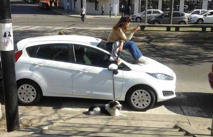 Se molestó al ver un auto mal estacionado y decidió esperar a su dueño para retarlo