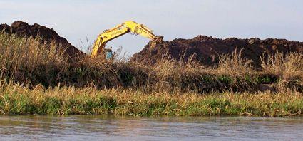 Villa Constitución: advierten sobre un desastre ecológico en las islas