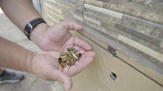 Mensaje con plomo: impactos en el frente y un puñado de vainas, postal de una balacera de octubre en Tablada.
