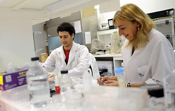 En acción. Los científicos rosarinos trabajan ahora en flamantes instalaciones en el predio de La Siberia.