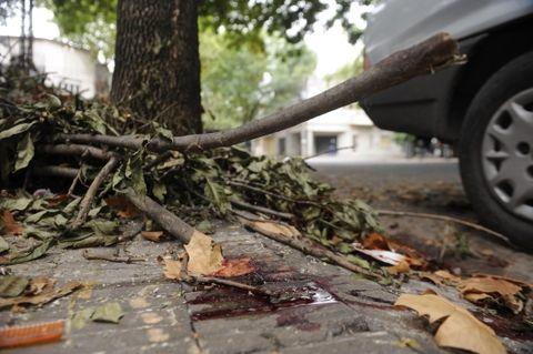 La mancha de sangre marca el lugar donde cayó agonizante el delincuente que huía de la policía por las calles de Echesortu. (Foto: S.Toriggino)