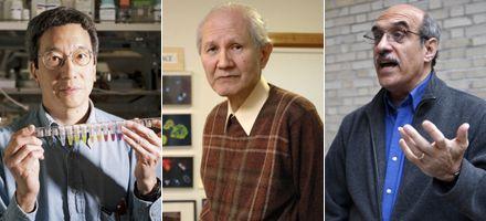 Otorgan el Nobel de Química a un japonés y dos estadounidenses