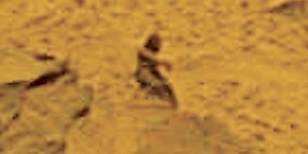 La foto de una roca de Marte hizo pensar que había un humanoide