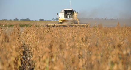 El precio de la soja está imparable y se acerca al récord histórico