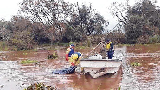 Romang. El cuerpo fue descubierto por pescadores flotando en el Paraná. Le faltaban las piernas y un brazo.