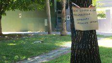 Paraná: fallo de la Justicia frenó tala de árboles en bulevar Racedo