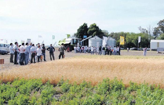 Se realizó una jornada en un campo de la localidad de Serodino.