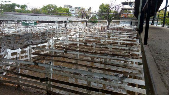 El paro ganadero se hizo sentir ayer en el mercado de Liniers.