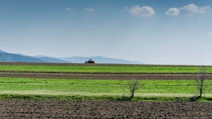 Insumos agrícolas: 5 consejos prácticos para optimizar su uso