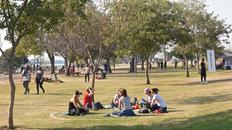 Aunque los círculos ya no están en los parques, el municipio anticipó que se controlará que los grupos no superen las 20 personas.