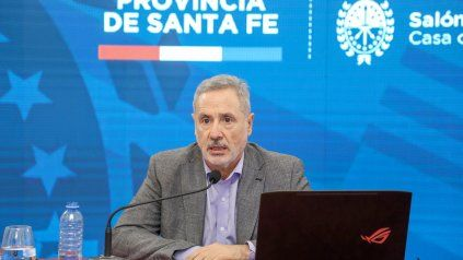 El titular de Seguridad repasó su proyecto reformista durante una conferencia de prensa virtual.