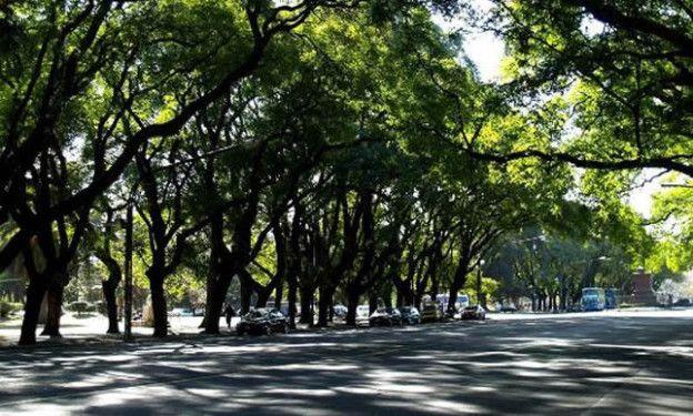 El asalto se produjo en una de las calles internas del parque Independencia.