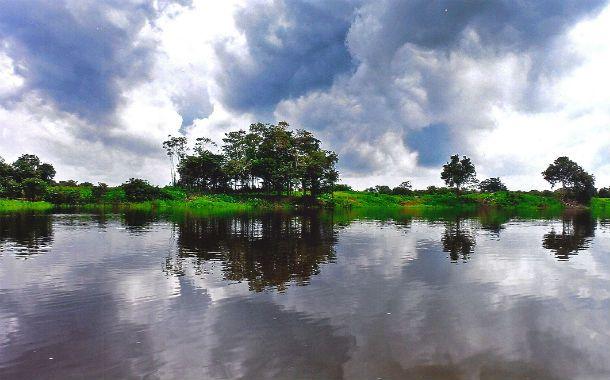 Paraíso en peligro. El río Amazonas y sus selvas son el mayor reservorio de biodiversidad del planeta.