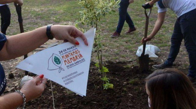 Las escuelas se sumaron a la campaña Plantemos Memoria.