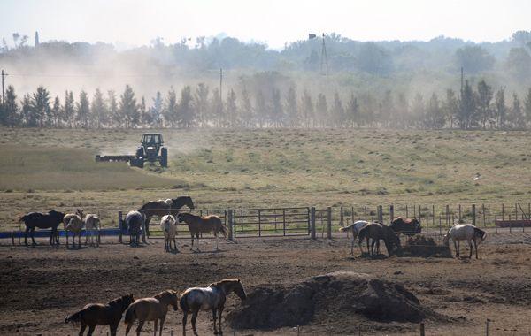 En Santa Fe ya hay 21 extranjeros propietarios de más de mil hectáreas