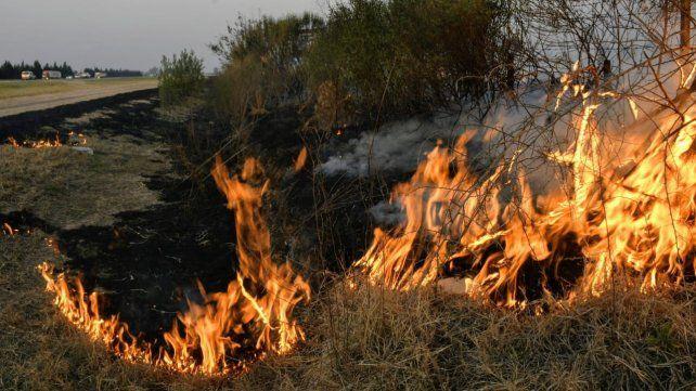 Los incendios en la zona de islas sobre el Paraná sigue causando estragos.