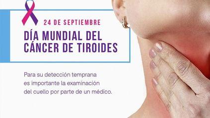 La tiroides es una glándula endócrina que se encuentra en la base del cuello por delante de la laringe