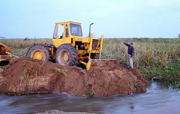Depredación. En la Justicia entrerriana hay denuncias radicadas por daño ambiental en las tierras usurpadas.