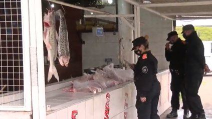 La Policía Ecológica llegó demoró a cuatro personas, secuestró la mercadería y clausuró el local.