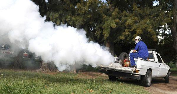 Cappiello: El dengue está controlado