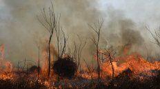 Para Fauba, las reservas de humedales en la Argentina se encuentran en vías de desaparición y degradación progresiva.