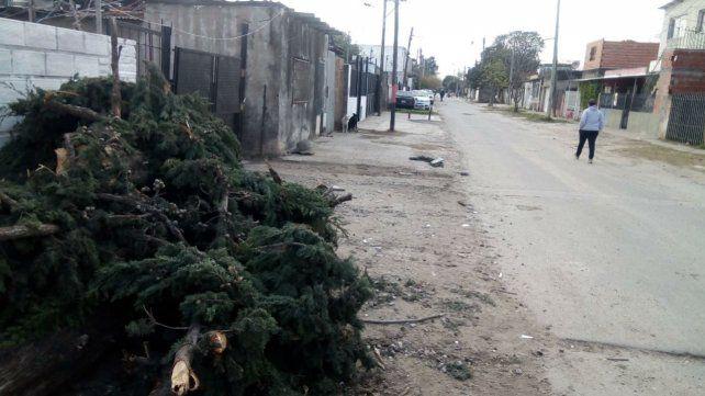 El crimen se produjo en la zona de Olivé al 2500.