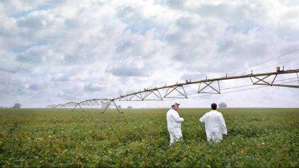 Destacan los beneficios ambientales de un bioinsumo fabricado en el país