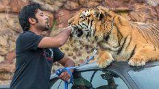 Humaid Albuqaish, multimillonario fanático de los autos y los felinos enormes