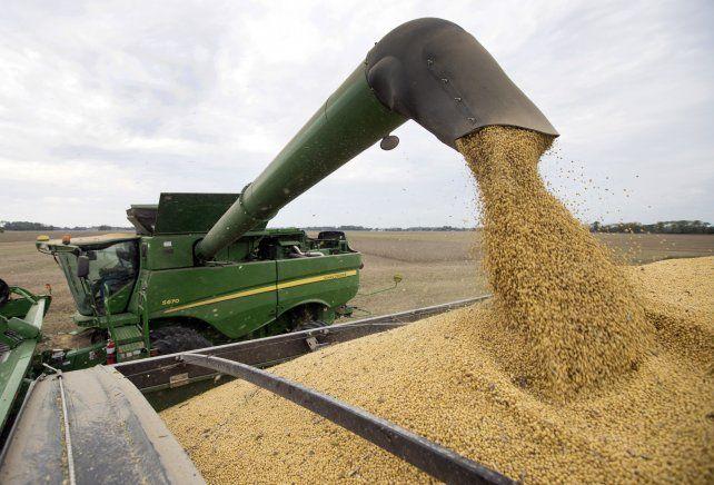 La guerra comercial impactó en la soja