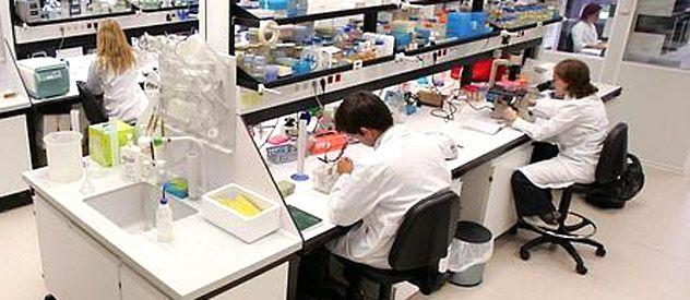 Area de terapia génica y hepatología de la Universidad de Navarra