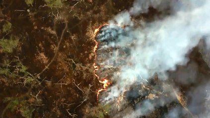 Una vista aérea de los incendios que destruyeron más de 400 mil hectáreas en el Delta del Paraná.