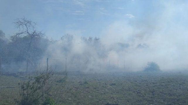 Se quemaron otras 20 hectáreas de monte nativo en Conscripto Bernardi