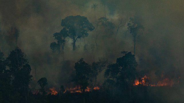 El día del fuego. Los hacendados. y mineros independientes quemaron campos de Pará el 10 de agosto.