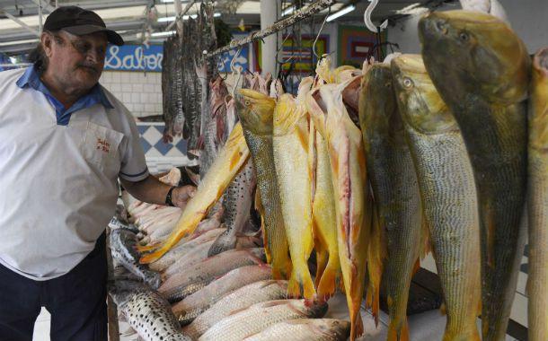 Pescaderías de la ciudad ofrecen una amplia variedad de pescados de mar y río para este fin de semana.