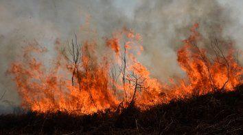 Argentina sube entre los países más afectados por los incendios