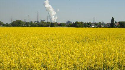 Lo máximo que podemos hacer es cambiar inmediatamente a energías no contaminantes