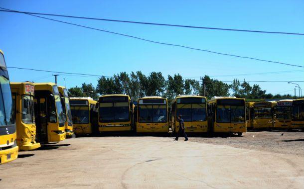 Colectivos amarillos. Rosario Bus